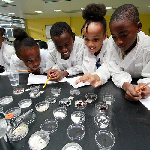 Performing a scientific analysis as a team.